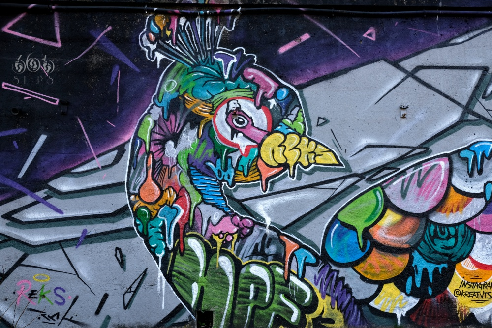 graffiti w Cieszynie na murze pod Mostem Wolności przedstawiające kolorowego pawia